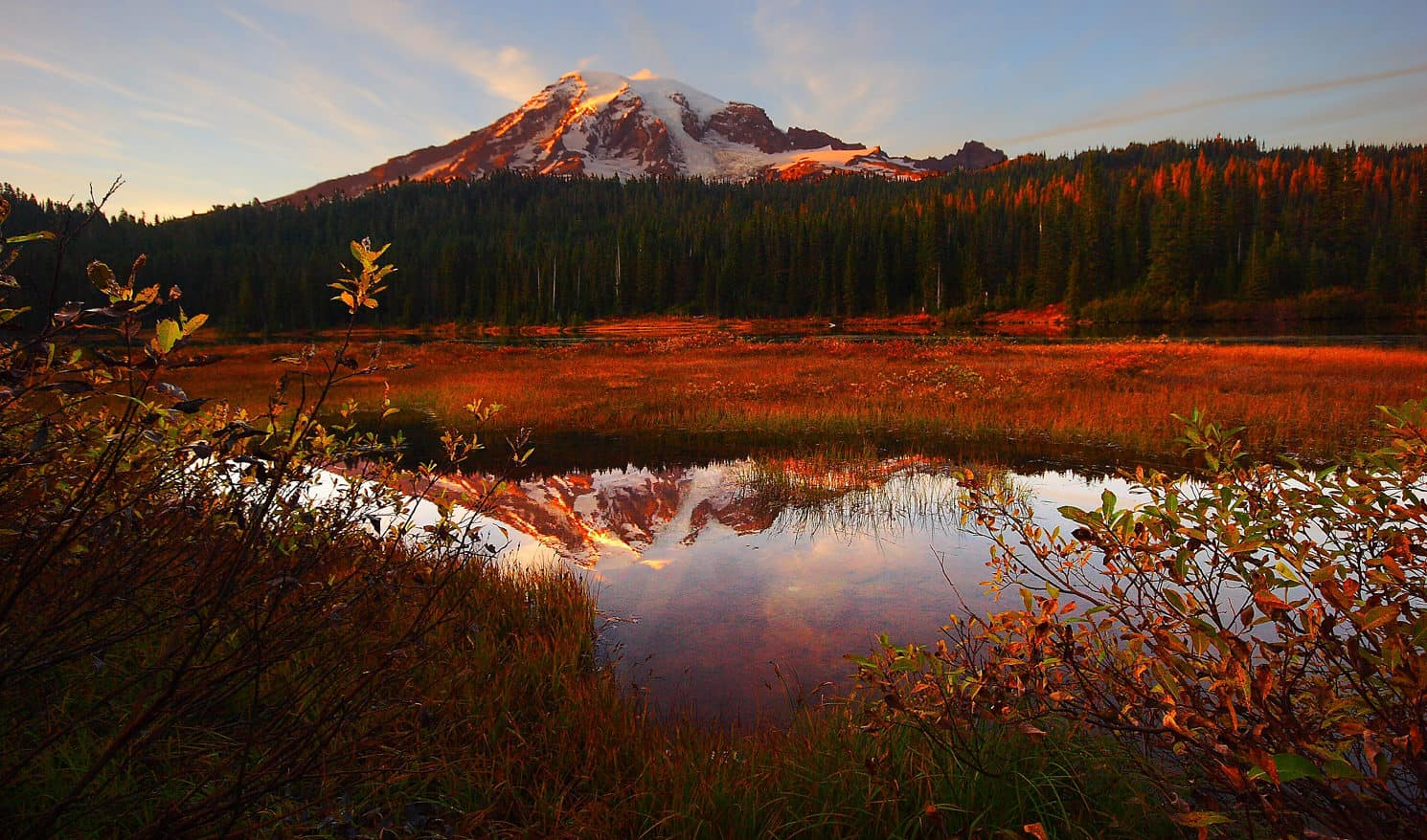 Mt Rainier Fall Colors Courtesy Don Jensen