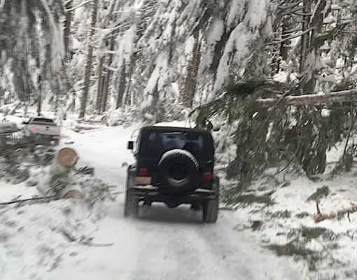 Winter Storms Impact Mount Rainier National Park Operations