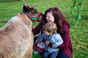 Rainier Reindeer Ranch