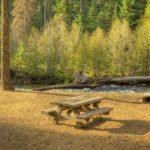 Cedar Springs Campsite