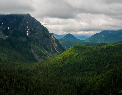 Stevens Canyon at Mount Rainier