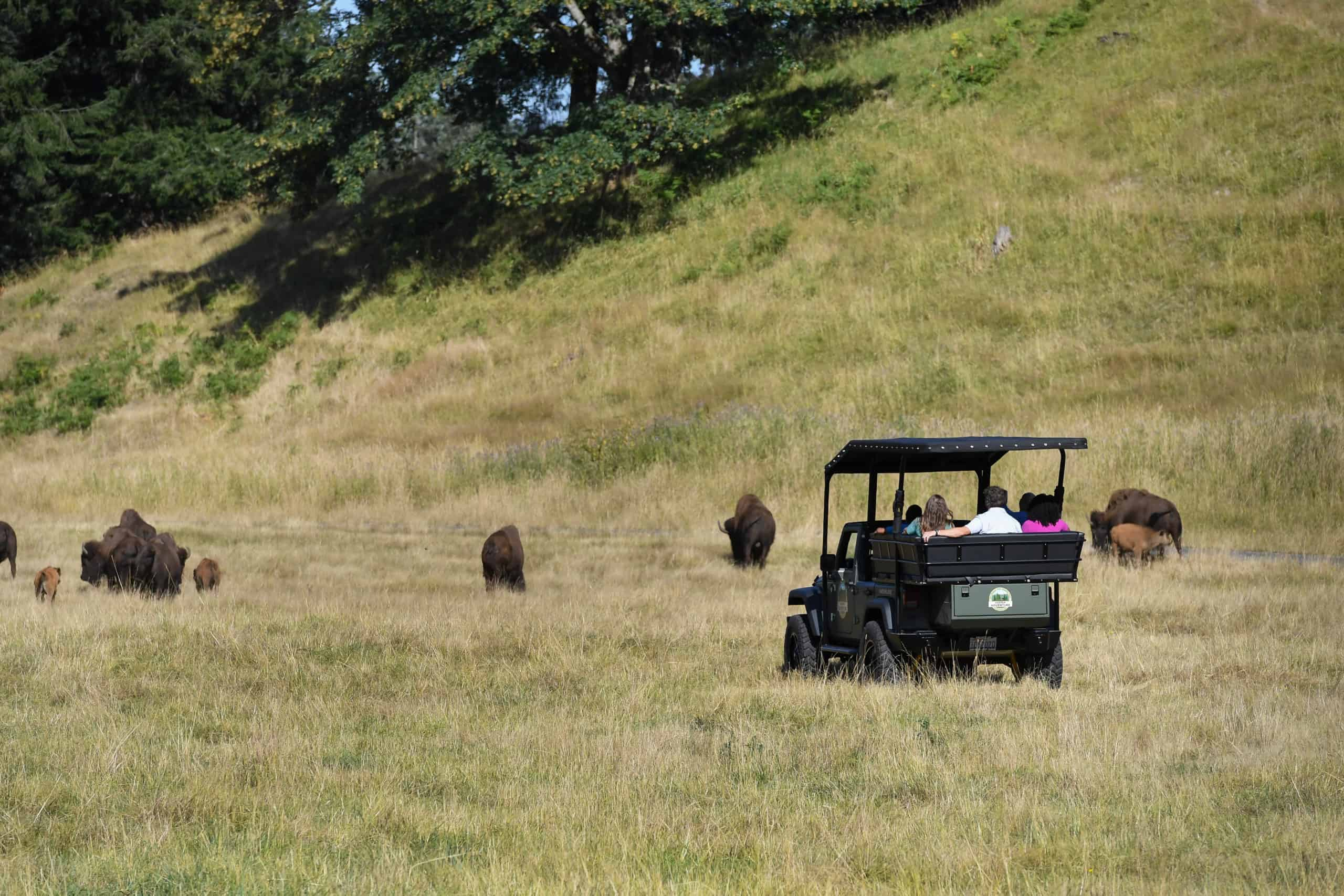 Jeep tour at Keeper Adventure Tours