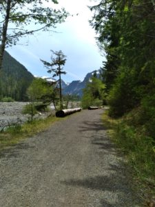 View from Carbon River Road