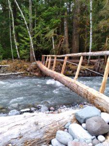 Log bridge along Carbon River Road