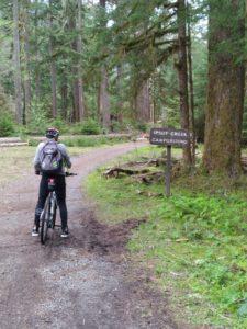 Biker at Carbon River Road