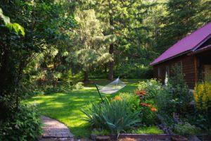 a hammock in the gardens of the Ashford Lodge
